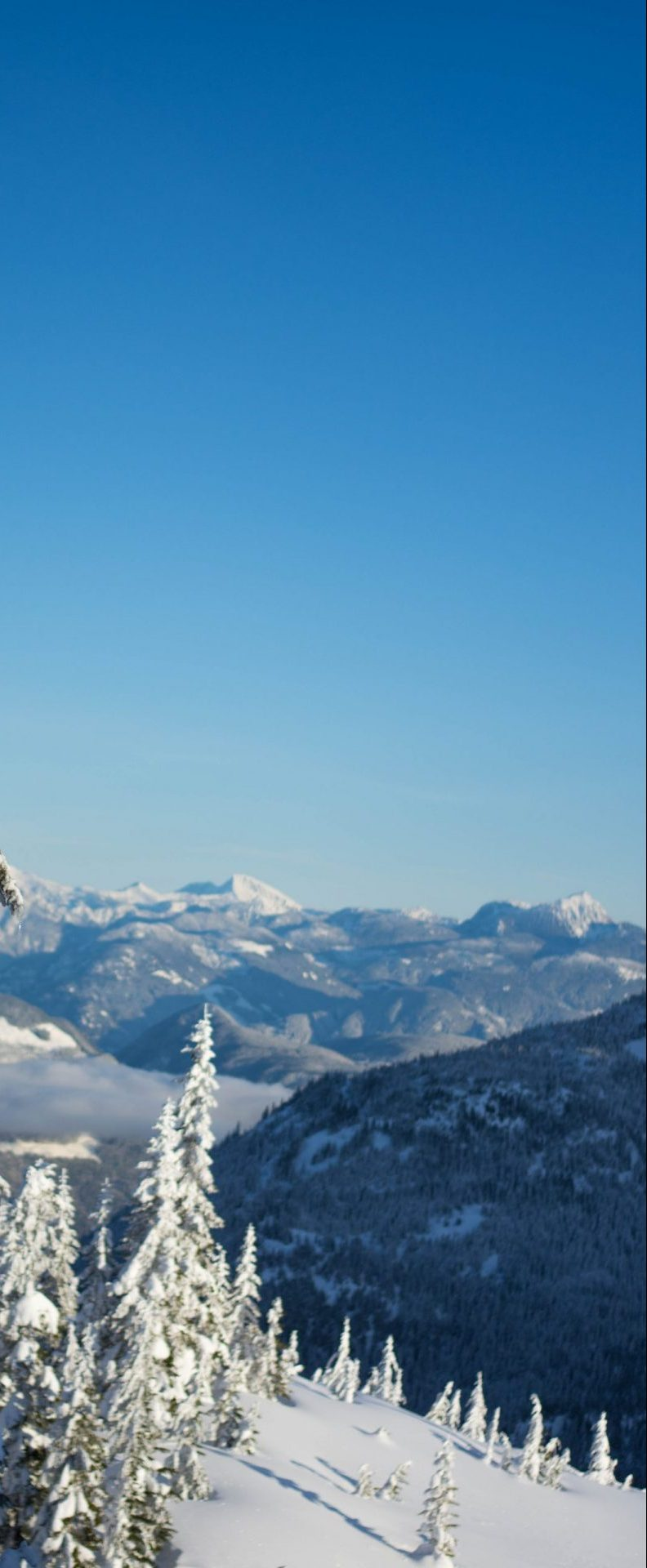 Sunny Day on the Mountain at Sasquatch Resort