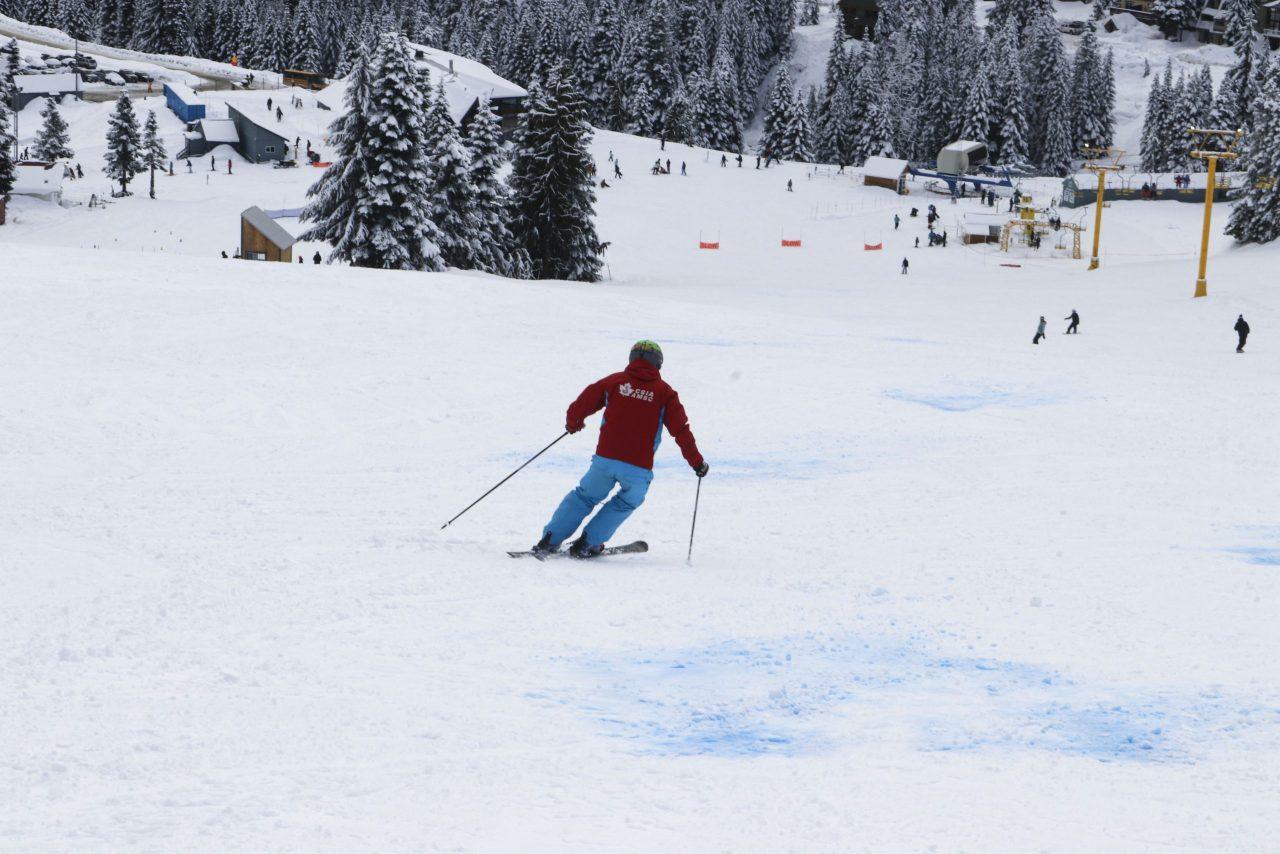 CSIA Instructor skis down a beginner run at Sasquatch Mountain Resort