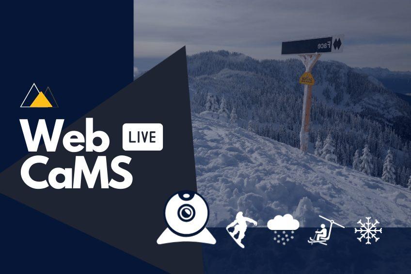 Webcams at Sasquatch Mountain Resort